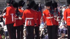 Thumbnail of Guards get disastrously tangled up during the Garter Ceremony at Windsor.