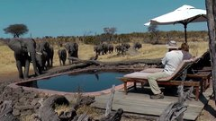 Thumbnail of Surprise visit from wild elephants that just need a drink from the pool