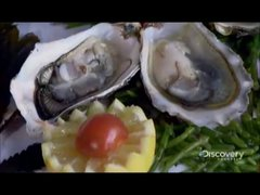 Thumbnail of How It's Made - Oysters
